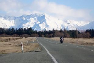 Mario Iroth New Zealand12