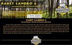 landro-6-1024x649
