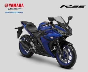 YZF-R25 Deep Purplish Blue (2)