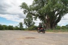 Wheel Story Season 5, Negara ke 6 Zimbabwe (11)