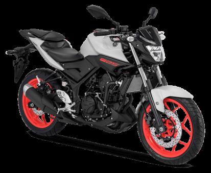 Yamaha MT 25 Warna Matte Grey 2018