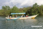 Hutan Mangrove Jembatan Cinta Batu Karas Pangandaran (11)