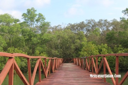 Hutan Mangrove Jembatan Cinta Batu Karas Pangandaran (5)