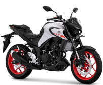 Yamaha MT 25 Matte Grey